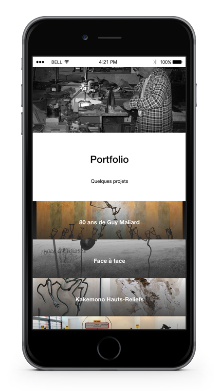 anthony galerneau Developpeur web wordpress lille iPhone